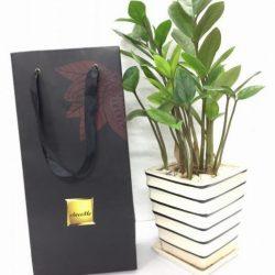 Túi giấy ChocoMe - In SHD Hà Nội